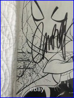 Signed Stan Lee /campbell Spider-gwen #2 J. Scott Campbell Sketch Variant